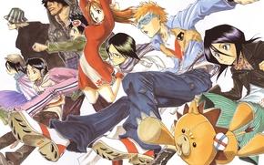 Picture Bleach, Ichigo Kurosaki, Bleach Urahara, Kuchiki Rukia, Orihime Inoue, Yasutora Sado, Uryuu Ishida, Kon, Tatsuki …