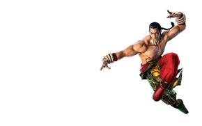 Picture art, Art, Game, Feng Wei, Feng, Tekken 5