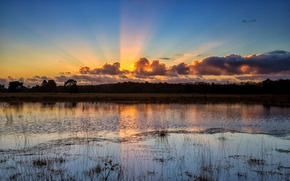 Picture the sky, water, the sun, clouds, trees, sunset, lake