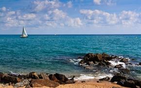 Picture sea, yachts, shore, sails