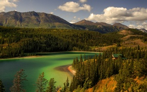 Picture forest, the sky, clouds, trees, mountains, lake