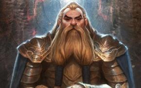 Picture fantasy, armor, art, Dwarf
