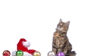 Picture cat, balls, kitty, hat, new year, cat, New Year