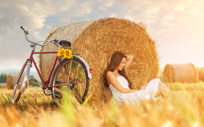 Picture field, girl, bike, sunflower, sunflower, haystack, girl bike, field haystack
