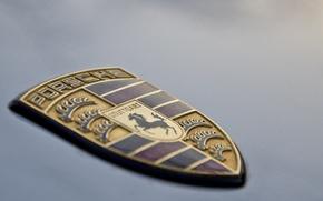 Picture horse, logo, Porsche, the hood, shield