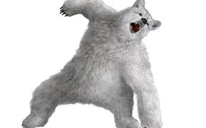 Picture white, bear, mouth, claws, fangs, evil, Tekken, Kuma