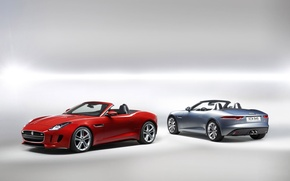 Picture red, background, Jaguar, silver, Jaguar, Roadster, rear view, the front, F-tayp, F-Type