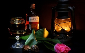 Picture background, widescreen, Wallpaper, glass, Tulip, candy, lantern, wallpaper, glass, rum, widescreen, background, full screen, HD …