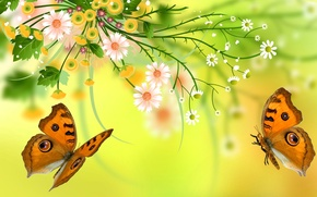 Picture leaves, flowers, nature, butterfly, petals, moth
