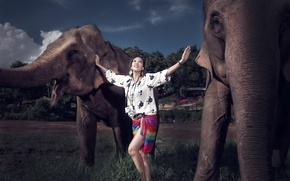 Picture girl, background, elephants