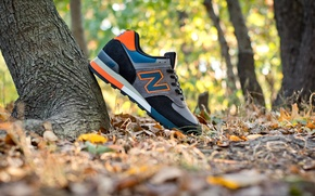 Picture sneakers, New Balance, 576EBO Three Peaks