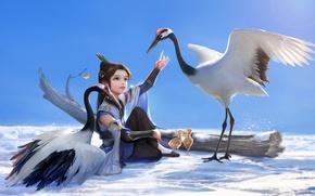 Picture snow, birds, tree, art, girl, Chicks, hao6578300