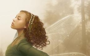 Wallpaper girl, elf, Wings