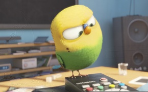 Picture remote control, Psittacidae, blu-ray, speakers, yellow-green, Official wallpaper, parakeet, movie, loudspeakers, Albert Brooks, television, TV ...