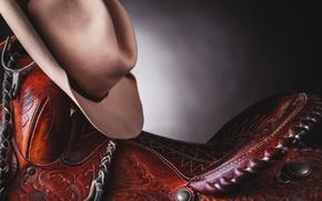 Picture macro, hat, saddle
