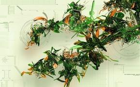 Wallpaper scheme, techno, plant