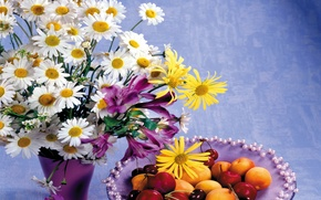 Picture flowers, cherry, photo, chamomile, bouquet, still life, peaches, cherry, alstremeria