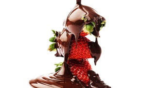 Picture chocolate, berry, dessert, sweet, chocolate-covered strawberries