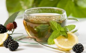 Picture berries, lemon, tea, Cup, still life, mint, BlackBerry