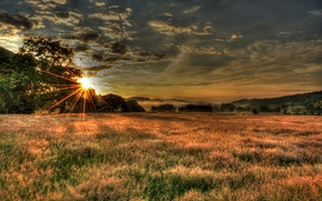 Picture field, the sky, the sun, clouds, rays, trees, sunset, England, England, Cockley Beck