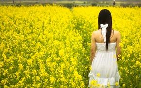 Picture field, white, summer, girl, the sun, flowers, yellow, background, widescreen, Wallpaper, mood, field, dress, brunette, ...