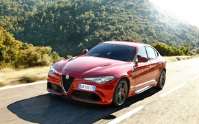 Picture Red, Alfa Romeo, Alfa Romeo, The front, Giulia