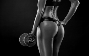 Wallpaper sexy, model, fitness