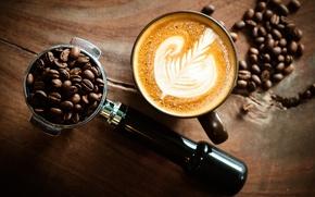 Picture foam, pattern, coffee, grain, Cup, saucer