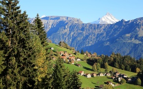Picture trees, mountains, field, home, Switzerland, slope, Beatenberg