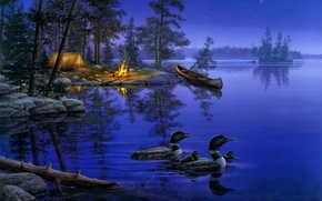 Wallpaper forest, night, nature, lake, fire, boat, star, duck, stars, the fire, tent, painting, the fire, ...