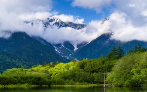 Picture forest, clouds, mountains, nature, lake