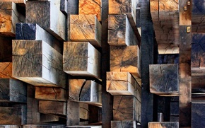 Picture tree, timber, spil