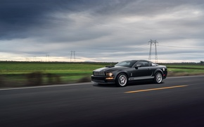 Picture Mustang, Ford, Muscle, Car, Speed, Front, Grey, Road, Collection, Aristo, GT 350