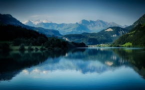 Picture forest, mountains, lake
