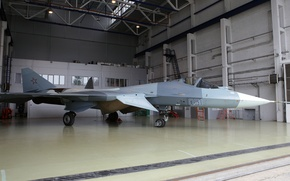 Picture T-50, PAK FA, Sukhoi, I-21, Promising aviation complex tactical aviation, Su-50, Videoconferencing Russia, Thyme