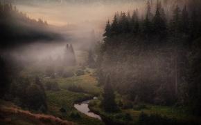 Picture fog, river, Czech Republic, Sumava, The Bohemian Forest, Šumava