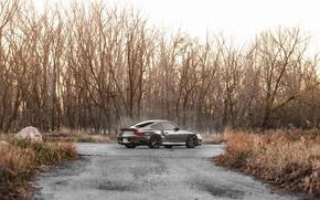 Picture 911, Porsche, Porsche, Turbo, 996