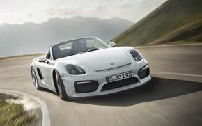 Picture Porsche, Porsche, Boxster, Spyder, 2015, 981, bokster