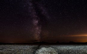 Picture field, space, stars, night, the milky way