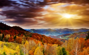 Picture autumn, forest, the sky, clouds, trees, mountains, dawn, the rays of the sun