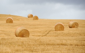 Picture field, storm, round bales