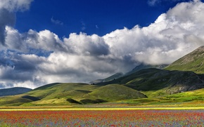 Picture the sky, clouds, flowers, mountains, Maki, meadow, Italy