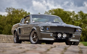 Picture Mustang, Ford, Shelby, GT500, USA, Eleanor, Muscle Car, Classic Car