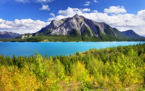 Picture autumn, forest, the sky, leaves, trees, mountains, lake, Canada, alberta, banff, abraham lake