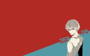 Picture minimalism, admin stupid hamster, Ken Kanek, Sasaki Smell, Tokyo Ghoul: Reborn, Tokyo Ghoul: Re