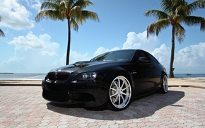 Picture palm trees, black, bmw, BMW, black, Miami, e92, tinted, miami