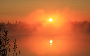 Picture fog, lake, dawn, Nature