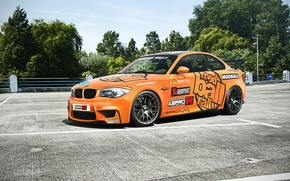 Picture car, rechange, bmw 1M