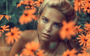 Picture eyes, look, girl, flowers, face, portrait