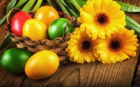 Picture eggs, spring, Easter, gerbera, colorful, spring, Easter, Gerberas